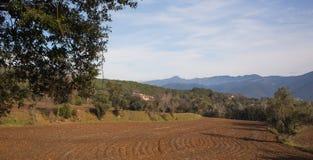 Plöjt fält med landskap Arkivbilder