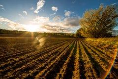 plöjt fält på solnedgången royaltyfria bilder