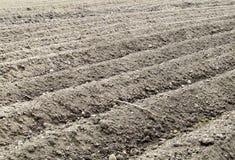 Plöjt fält, vårtid, innan att plantera royaltyfria bilder