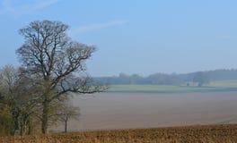 Plöjt skördfält i lantliga England Royaltyfri Foto