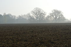 Plöjt skördfält i lantliga England Royaltyfri Fotografi