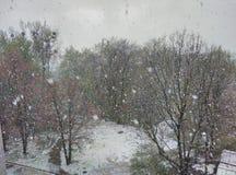 Plötslig snöstorm royaltyfria bilder