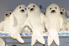 Plüsch-Pelzdichtungen der Familie weiße im Shop lizenzfreies stockfoto