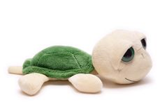 Plüschschildkröte Lizenzfreies Stockfoto
