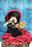 Plüschteddybär mit einem Blatt, Text in einen warmen Burgunder-Hut unter dem Herbstlaub auf einen blauen hölzernen Hintergrund zu Stockfotos