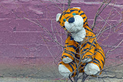 Plüschtigerspielzeug vergessen auf einem Baum Lizenzfreies Stockfoto
