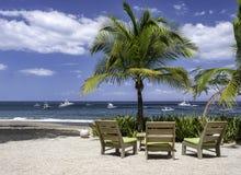 Plażowi krzesła i drzewko palmowe na ocean plaży z kopii przestrzenią obraz stock