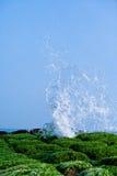 plaża kłębi się szlagierowe skały Obrazy Royalty Free