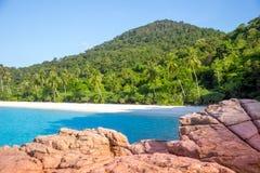 plaża kołysa denną palmy wyspę Malaysia Obraz Stock