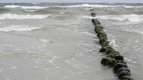 Plaża morze bałtyckie Zdjęcia Stock