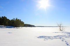 Zimy plaża Obraz Stock