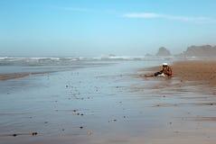 Plaża ocean człowieku Obraz Royalty Free