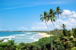Plaża palmy i Ocean Indyjski turkus woda, Obrazy Stock