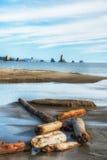 Plaża 3 przy losu angeles pchnięciem, Waszyngton wybrzeże Zdjęcia Royalty Free