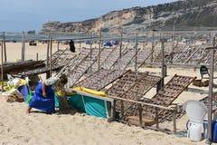 Plaża przy Nazare wioską rybacką w Portugalia Zdjęcia Stock