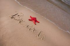 plaża przynosząca składów skorup woda Fotografia Stock