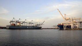 plaża tęsk port zdjęcie wideo