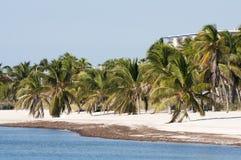 Plaża w Key West Zdjęcia Royalty Free