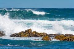 Plaża w Portowym Elisabeth, Południowa Afryka Zdjęcie Stock
