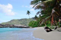 Plaża w Seychelles obrazy royalty free