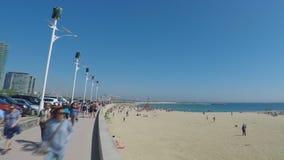 Plaża W zima czasów niecce zdjęcie wideo