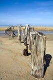plaża wysyła tropikalnego Fotografia Stock