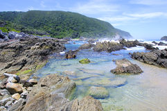 Plaża wzdłuż Wydrowego Wycieczkuje śladu, Południowa Afryka Obrazy Stock