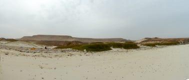 Plaża zanieczyszczający środowisko brudny brzeg obrazy stock