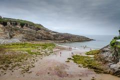Plaże i falezy fotografia stock