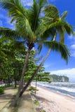 Plażowa ścieżka zdjęcie royalty free