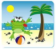 plażowa żaba Zdjęcia Royalty Free