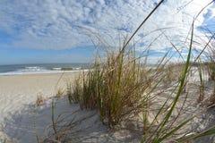 plażowa dzień dziewczyny mała przyglądająca woda Zdjęcie Stock
