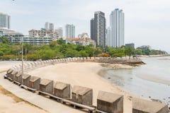 Plażowa frontowa sceneria z zielonym lasowym miasta linia horyzontu w tle podczas dnia obraz stock