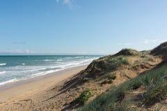 Plażowa piasek diuna na słonecznym dniu w Coorong parku narodowym, Południowy Aus Obraz Stock