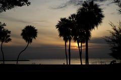 Plażowa scena przy wschodem słońca w sylwetce obrazy royalty free