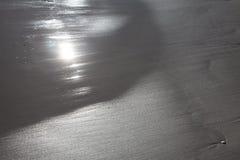 Plażowa tekstury gałęzatka na piasek plaży Obraz Stock