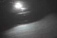 Plażowa tekstury gałęzatka na piasek plaży Obrazy Royalty Free