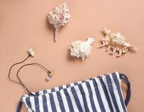 Plażowa torba, seashells, słuchawki na brązu tle, plażowy sezon, odpoczynek na morzu Odgórny widok, minimalizm, mieszkanie nieatu obrazy stock