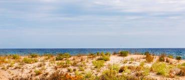Plażowe diuny w słońcu, plażowa scena z kopii przestrzenią, piasek diuny zdjęcie stock