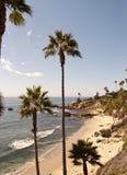 plażowe palmowe skały Obrazy Royalty Free