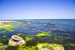 plażowe skały Zdjęcia Stock