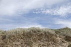 plażowej Canada diun Ontario parkowej ananasarni małomiasteczkowy piasek Obrazy Royalty Free