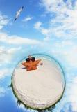 plażowej mikro rozgwiazdy tropikalny świat zdjęcia royalty free