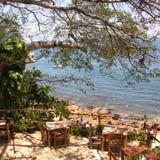 plażowi caletas lasów fotografia royalty free