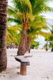 Plażowi krzesła, drzewka palmowe i piękny biały piasek, wyrzucać na brzeg w tropikalnej wyspie Obraz Stock