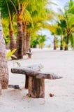 Plażowi krzesła, drzewka palmowe i piękny biały piasek, wyrzucać na brzeg w tropikalnej wyspie Obrazy Royalty Free