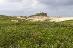 plażowi nobbys fotografia stock
