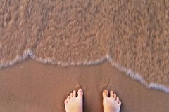 Plażowy życie Zdjęcie Stock