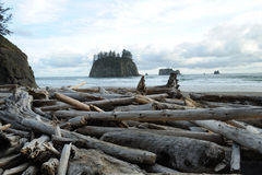 plażowy brzegowy Pacific zdjęcie royalty free