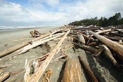 plażowy brzegowy Pacific zdjęcie stock